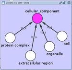 ontology_cctop.png